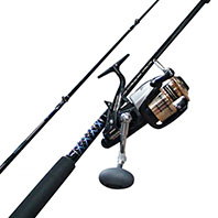 Buy Fishing Rod and Reel Online